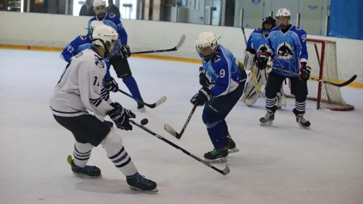 «Полюс-2001» стал победителем первенства Владивостока и завоевал серебро «Кубка федерации»