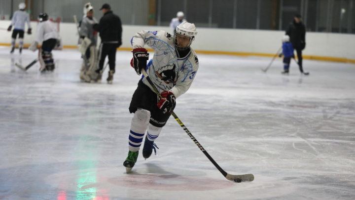 На ледовой арене ICE Тигр прошёл мастер-класс для хоккеистов