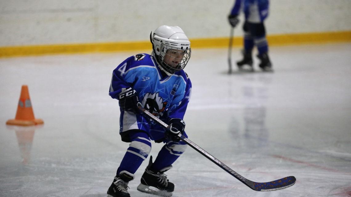 На ледовой арене ICE Тигр вновь прошёл мастер-класс для хоккеистов