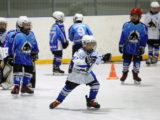 На ледовой арене «ICE Тигр» прошёл мастер-класс по хоккею